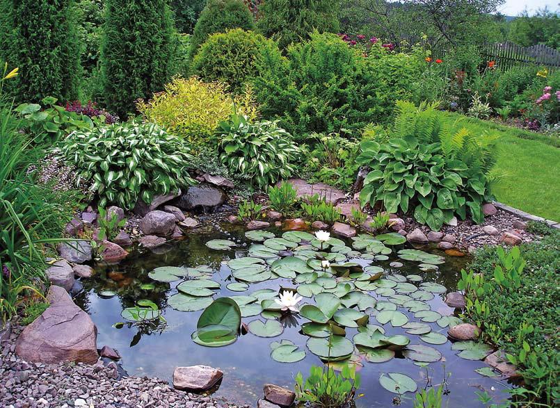 Ландшафтный дизайн прудов, ручьев, водоемов